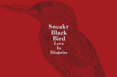 O Sneaky Blackbird έχει φλογερό ταπεραμέντο. Tο  «Love In Disguise» είναι το πρώτο του ηχογραφημένο τραγούδι και περιγράφει το ταξίδι στον σύγχρονο τρόπο που σκηνοθετούμε τον έρωτα.