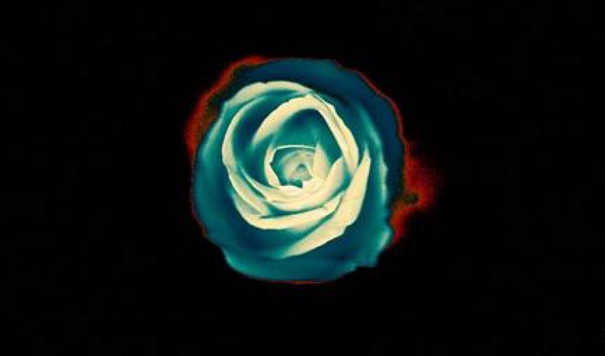 Οι Grey Daze φέρνουν στο φώς της δημοσιότητας ακυκλοφόρητο υλικό που είχαν ηχογραφήσει με τον τραγουδιστή Chester Bennington των Linkin Park.